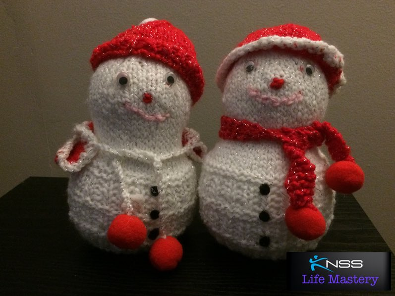 What Are Your Plans For The Holidays - KNSS Consulting Group